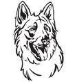 decorative portrait dog berger blanc suisse