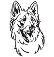 decorative portrait of dog berger blanc suisse vector image vector image