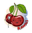 delicious cherries fruit kawaii character cute vector image vector image