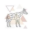 geometric okapi polygonal okapi vector image