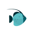 marine life exotic fish cartoon sea fauna animal vector image vector image