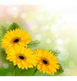 Nature background with yellow beautiful flowers vector image vector image