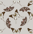 seamless pattern with hand drawn colored graphium vector image