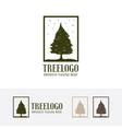 tree logo design vector image vector image