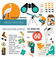 Bird watching infographic template vector image