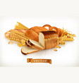 carbohydrates bread pasta wheat cereals 3d vector image vector image