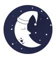 cute moon sleeping icon vector image vector image