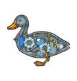 mechanical duck bird animal sketch engraving vector image vector image