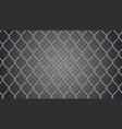 seamless realistic chain link fence backgroun vector image vector image