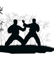 Two men are engaged karate an vector image