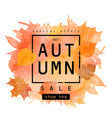 watercolor autumn foliage vector image vector image