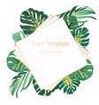bright green exotic tropical jungle palm tree vector image vector image
