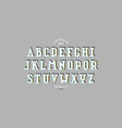 decorative serif bulk font vector image vector image