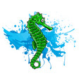 fish sea horse green image vector image