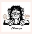 peeking chimpanzee - funny chimpanzee out vector image vector image
