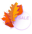 sale circle banner with bright autumn leaves vector image