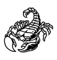 scorpion vintage tattoo template vector image vector image