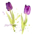 card with watercolor tulips vector image vector image