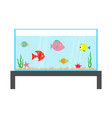 fish set swimming at aquarium star crab seaweed vector image