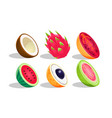 tropical fruits set dragon fruit coconut vector image
