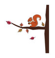 wild animals and elements thanksgiving day and vector image vector image