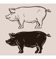 pig logo farm pork or piggy icon vector image