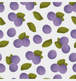 blueberry seamless pattern colorful blue vector image vector image