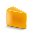 Cheddar cheese isolated on white vector image