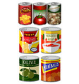 different kinds of food in can vector image vector image