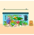 Fish tank aquarium with water animals algae vector image