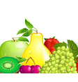 juicy fruit vector image