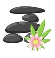 Spa stones isolated vector image vector image