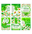 Spring flower greeting card set for holiday design vector image
