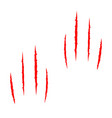 two red bloody claws animal scratch scrape track vector image