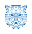 abstract head tiger or bear consisting of vector image vector image