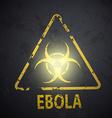 biohazard symbol on the wall vector image vector image