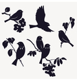 Birds and twigs vector | Price: 1 Credit (USD $1)