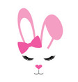 pink bunny with long lashes vector image vector image