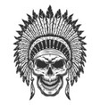 skull of american indian vector image vector image