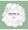 Tropical Fruits Vintage Sketch vector image