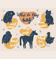 what do animals say - modern vector image