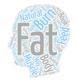 Burn The Fat Feed The Muscle Review text vector image vector image