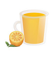 delicious natural tea with orange in a beautiful vector image vector image
