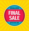 final sale - concept promotion banner abstract vector image vector image