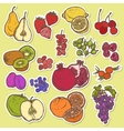 Fruits and berries sketch stickers colored vector image vector image