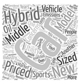 new hybrid cars 1 text background wordcloud vector image vector image