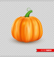 realistic ripe pumpkin isolated on transparent vector image