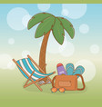 tree palms beach with vacations icons vector image vector image