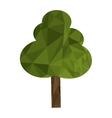 polygon texture tree icon vector image