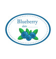 blueberry label disign isolated on white vector image vector image